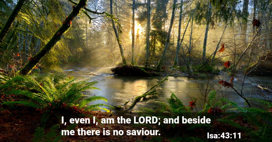 God is the only Saviour